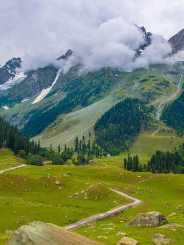 Kashmir tour packages - 6 Days